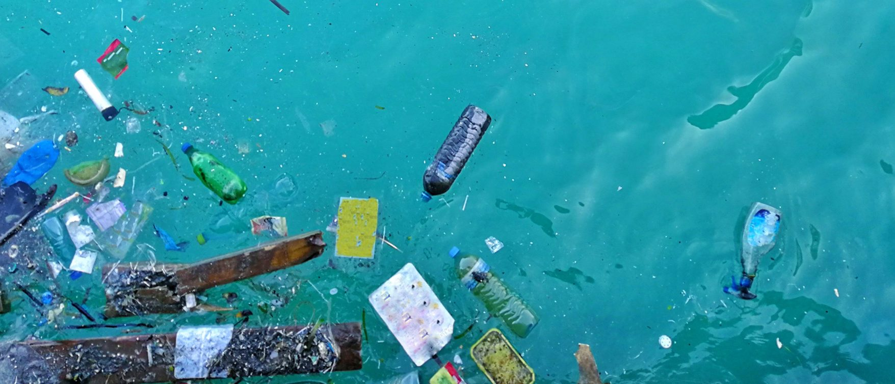 Plastics in the sea